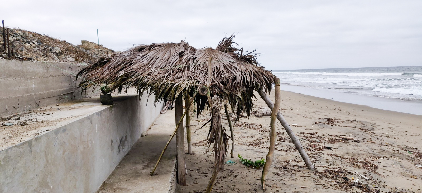 A tropical palapa (what's left of it)