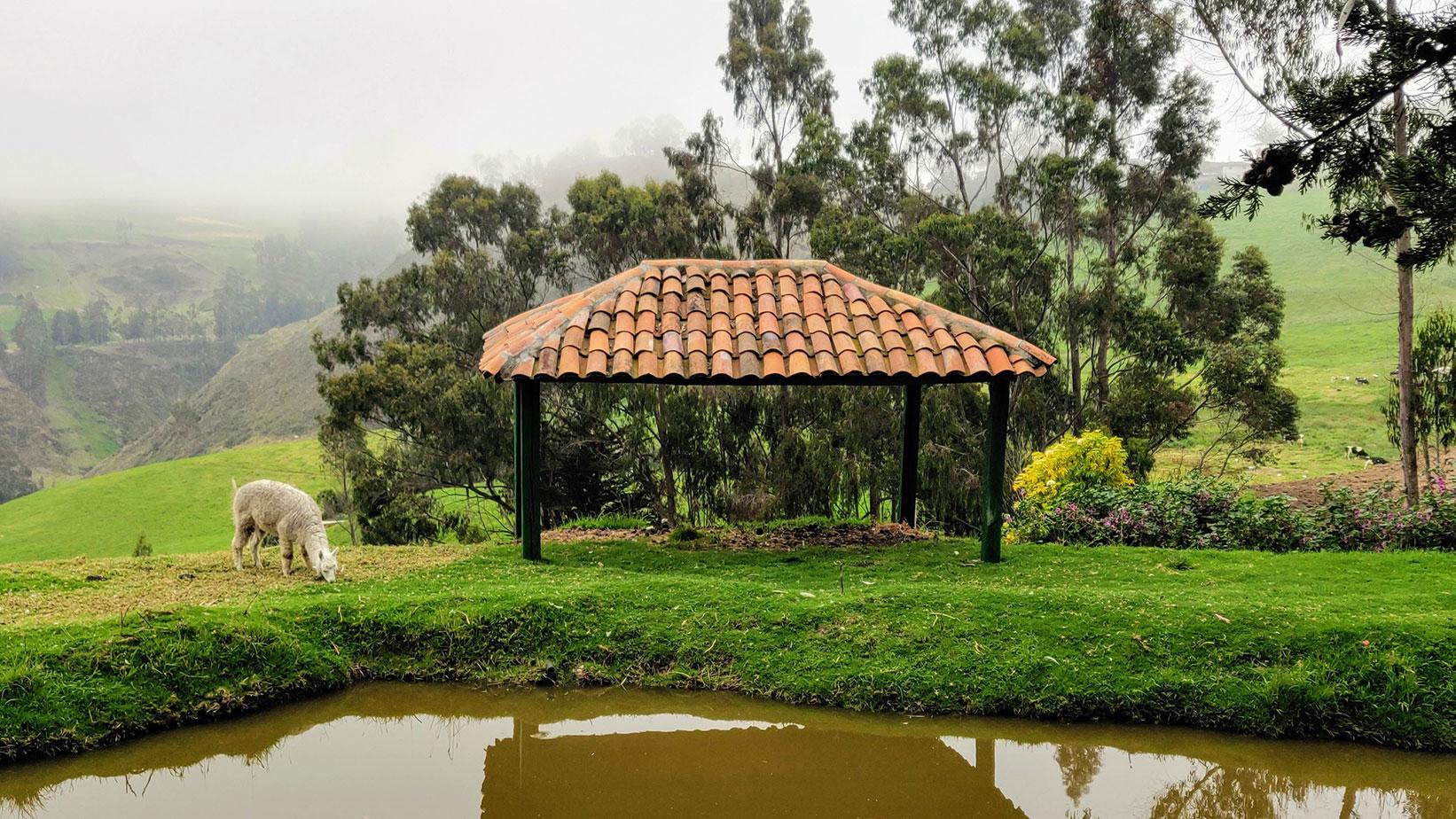 The Grounds at Posada Ingapirca